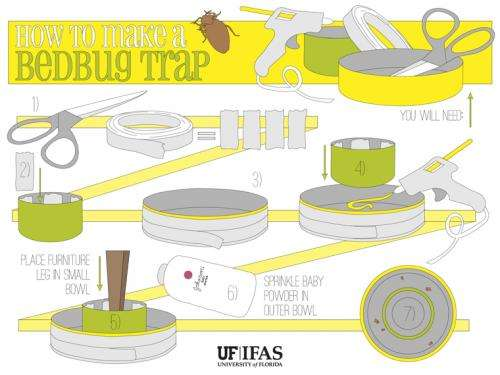 A better bedbug trap made from household items for about $1 (w/ Video)