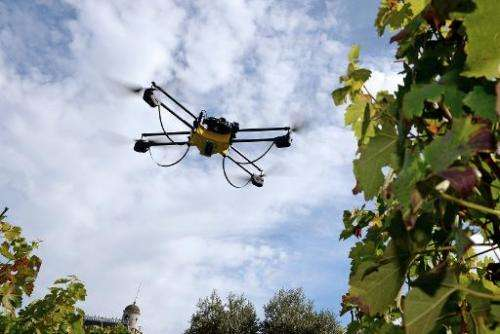 A drone flies over vineyards at Pape Clement castle, in Pessac, south western France, on September 9, 2014