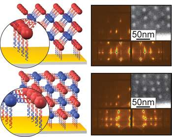 A layered nanostructure held together by DNA