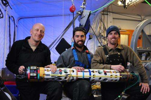 ANDRILL team discovers ice-loving sea anemones in Antarctica