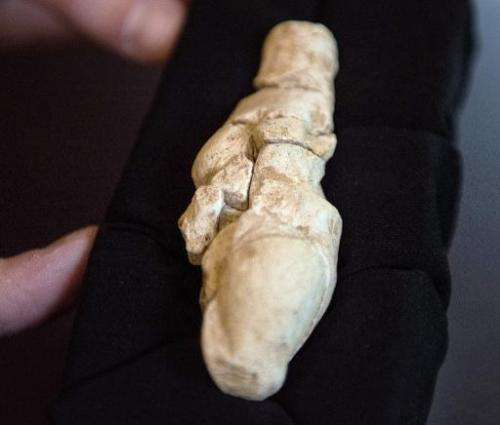 "A person points to a 23,000 year-old chalk statue of a woman called the ""Venus of Renancourt"" which was found at the p"