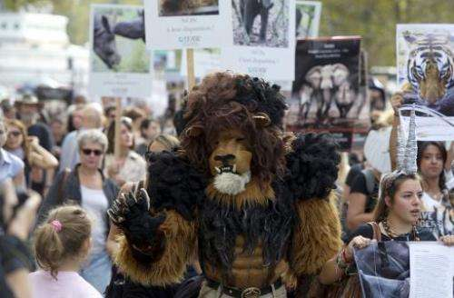 A protester dressed as a lion takes part in a demonstration in Paris as part of the Global March for Elephants, Rhinos and Lions