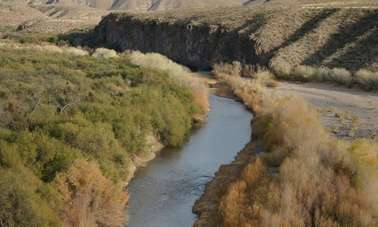 ASU study finds varied fish response to unexpected droughts