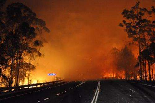 AUSTRALIAA handout picture taken late on January 8, 2013 and provided by New South Wales Rural Fire Service (NSW Rural Fire Serv