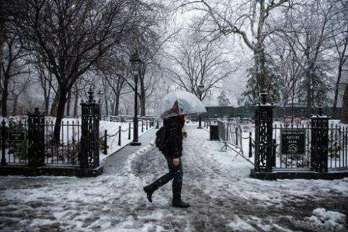 A woman walks through Washington Square Park during a snowstorm on February 3, 2014 in New York City