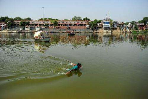 A youth swims in the polluted waters of the river Ganges at Sarsaiya Ghat in Kanpur on June 26, 2014