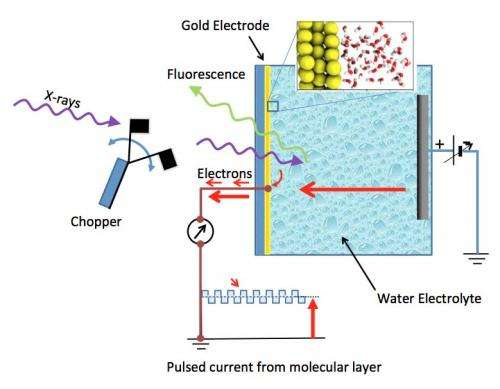 Berkeley Lab study reveals molecular structure of water at gold electrodes