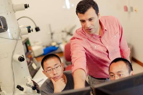Better than perfect: Defects in materials could be key to better batteries