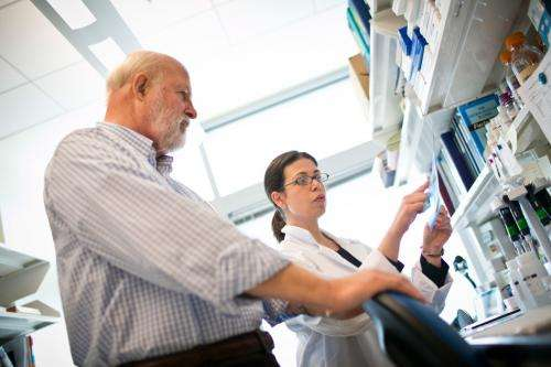 Biologists identify extracellular proteins that help aggressive tumors spread through the body