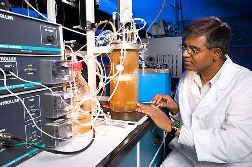 Boosting butanols role in the biofuel world