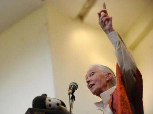 British primatologist Jane Goodall delivers a speech during a presentation at the National Museum on January 26, 2013 in Nairobi