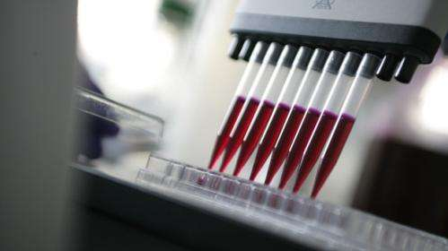 Cancer drug RG7813 launches in its first clinical trial