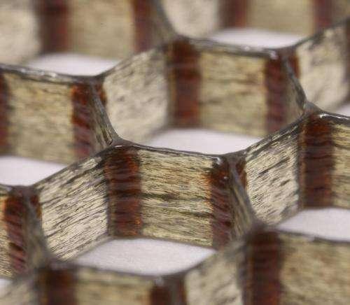 Carbon-fiber epoxy honeycombs mimic the material performance of balsa wood