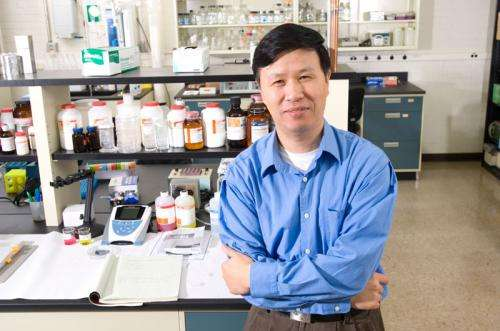 Cell mechanics may hold key to how cancer spreads and recurs
