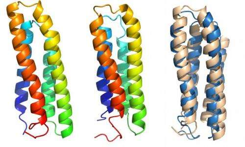 Cell membrane proteins give up their secrets