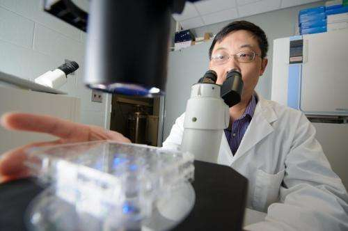 Cell resiliency surprises scientists