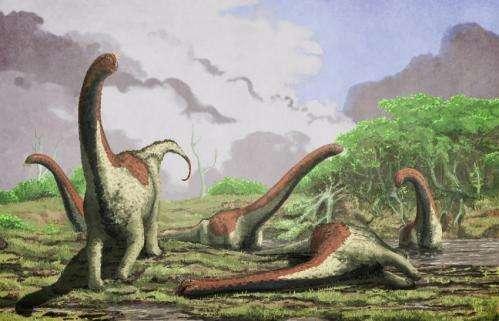 New species of titanosaurian dinosaur found in Tanzania
