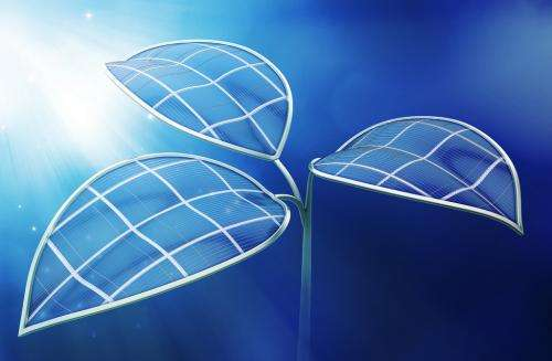 Cobalt catalysts allow researchers to duplicate the complicated steps of photosynthesis