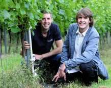 Cornish winemakers could benefit from climate change study