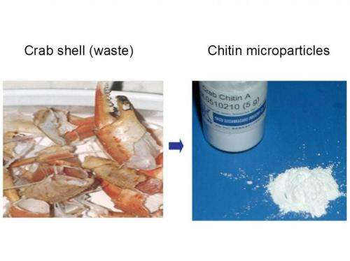 Crab and other crustacean shells may help prevent and treat inflammatory disease