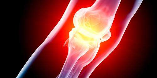 Curing arthritis in mice