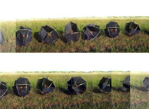 Data-gathering Tumbleweed robot seeks to understand desertification