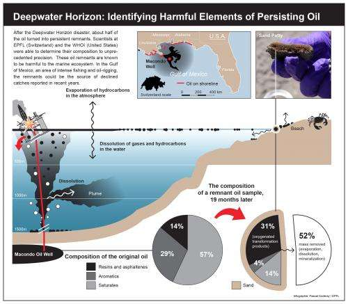 Deepwater Horizon: Identifying harmful elements of persisting oil