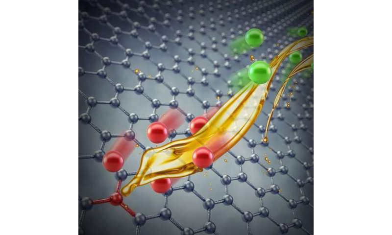 Defects on graphene electrode alter behavior of electrode-electrolyte interface