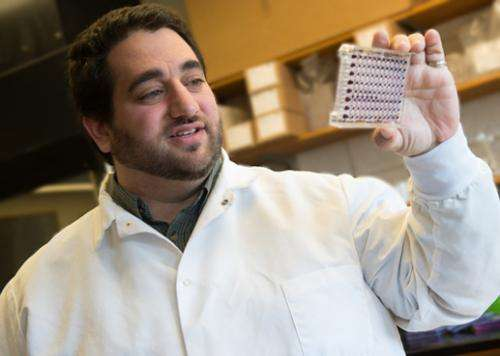 Dendritic cell research a step toward improved vaccines, immune health