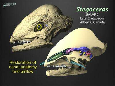 Dinosaur breathing study shows that noses enhanced smelling and ...