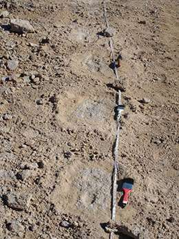 Discovery of oldest footprints gives clues to Mexico's climate