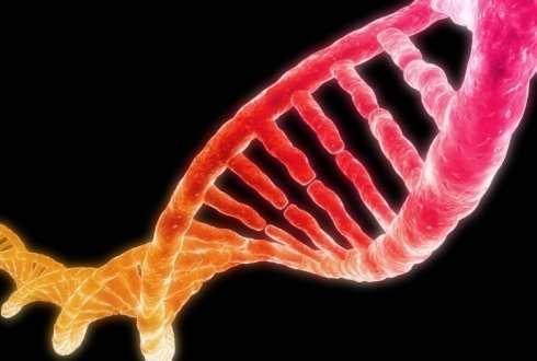 DNA based diagnostics 2.0