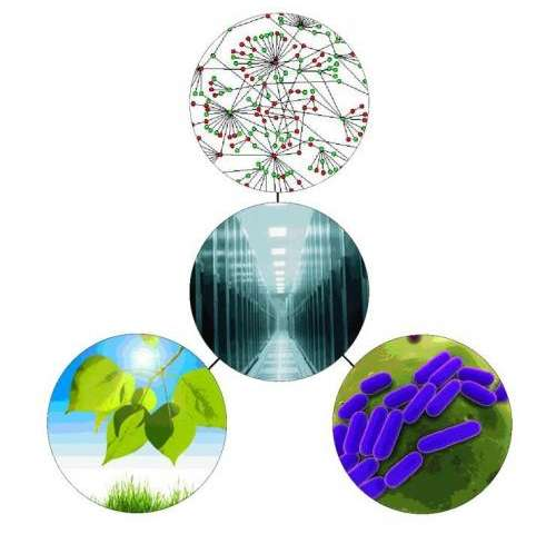 DOE 'Knowledgebase' links biologists, computer scientists to solve energy, environmental issues