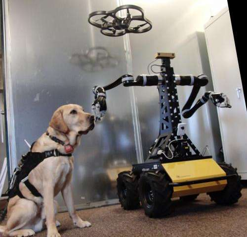 Dogs, technology and the future of disaster response