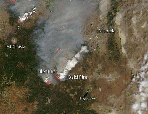 Eiler and Bald Fires in California