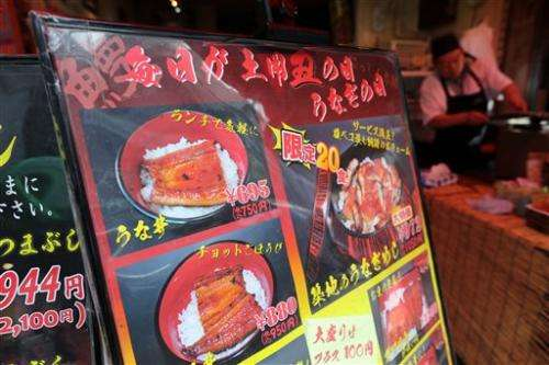 Endangered delicacy: Japan eel on species red list
