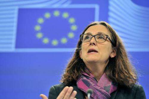 EU home affairs commissioner Cecilia Malmstroem gives a press conference on December 4, 2013 at the EU Headquarters in Brussels