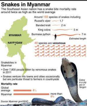 Factfile on snakes in Myanmar