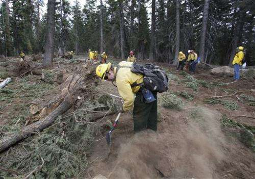 Feds allows logging after huge California wildfire