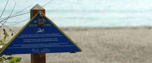 Few surfers are deterred by ocean bacteria that makes them sick