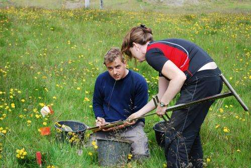 Findings at Viking archaeological site show power trumping practicality