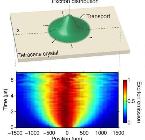 First direct observations of excitons in motion achieved