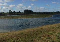 Floodplain restoration project re-creating lost habitat
