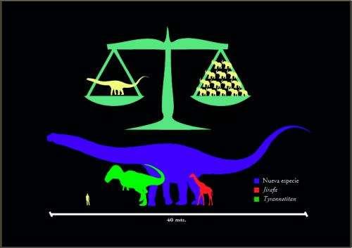 Fossils of 'largest' dinosaur found in Argentina (Update)