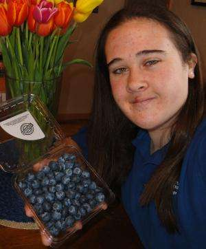 Frozen blueberries pack more powerful antioxidant punch
