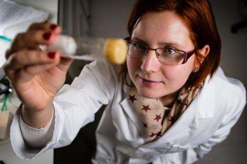 Fruit fly research to provide new insight into our body clock and its biological impact