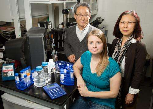 Gelatin nanoparticles could deliver drugs to the brain