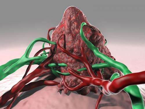 New cancer vaccine approach directly targets dendritic cells