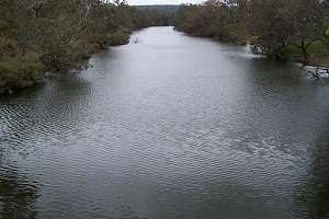 Groundwater proves key to sustaining south-west fish