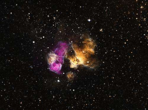 Hardy star survives supernova blast